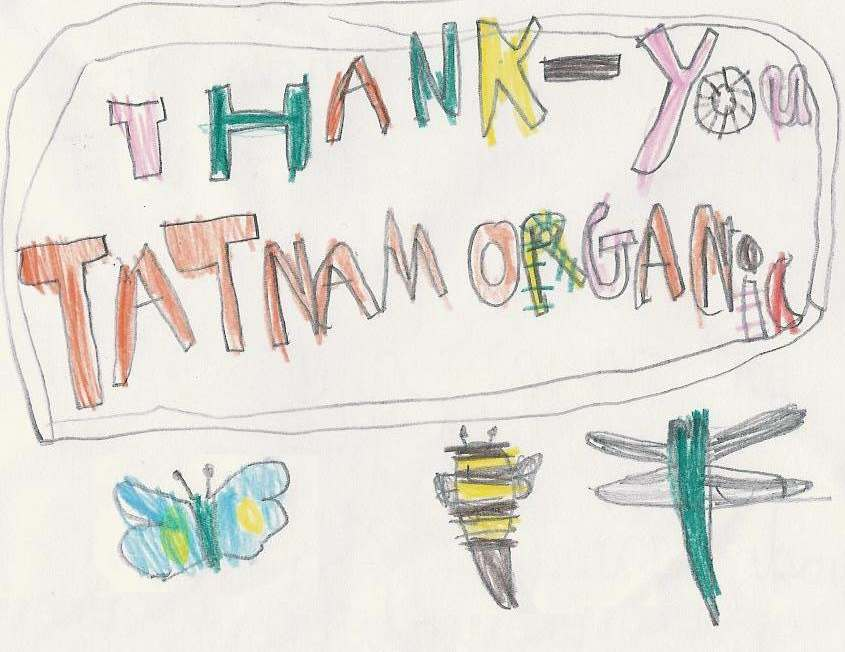 Thank you card from Matt at Hillborne school