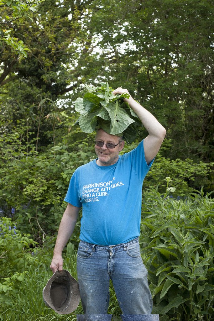 More cabbage shenanigans